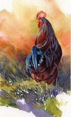 Rooster by Joe Garcia