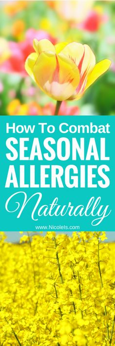 How to Combat Seasonal Allergies Naturally - Nicole Is Seasonal Allergy Remedies, Seasonal Allergy Symptoms, Natural Remedies For Allergies, Seasonal Allergies, Natural Home Remedies, Allergy Home Remedies, Itchy Eye Relief, Asthma Relief, Diabetes
