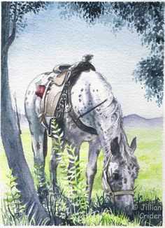 "REDUCED well over 50%. Buy it now! Make an offer: ""Appaloosa Rogue"" www.ebay.com/itm/291390952701? Original watercolor SFA 7x5"" artist: Jillian Crider (artistjillian). See my eBay account for more sale items + more to come ... SALE SFA watercolor painting Appaloosa HORSE ROGUE equine saddle original CRIDER #Realism"