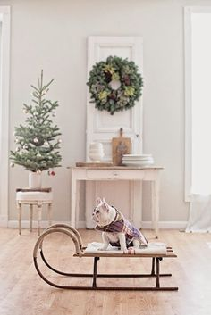White Christmas magic as a white puppy on a vintage sled in a cape steals the show! White French farmhouse Christmas decor magic from Dreamy Whites. Merry Little Christmas, Noel Christmas, Winter Christmas, All Things Christmas, Simple Christmas, Natural Christmas, Scandinavian Christmas, Christmas Images, Beautiful Christmas