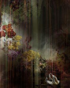 Curtains - Isabelle Menin