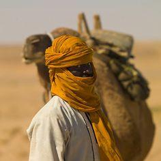Desert Dreamer