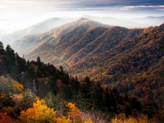 Visit the Great Smoky Mountains for a relaxing getaway. Head to Blackberry Farm, nestled in the foothills, for a luxurious stay that's not to be missed. For travelers looking for adventure, there's hiking, fly-fishing and horseback riding aplenty in these iconic mountains.