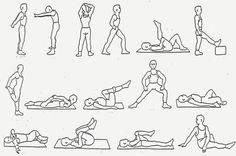 rek- en strekoefeningen