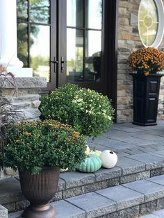 Fall Porch I've always found decorating for fall fun although I like to keep decor simple. I add some colourful mums from our local nursery that compliment the exterior colour of the stone, and add pumpkins from Michael Decor, Fall Living Room, White Wash Brick, Mums In Pumpkins, Fall Decor, Fall Porch, Cottage Decor, Autumn Home, Porch Decorating