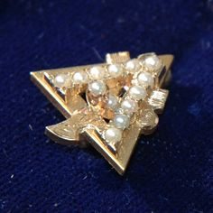 Alpha Gamma Delta badge