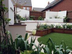 Contemporary garden planting