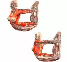 Зыонг Шинь: упражнения для здоровья почек