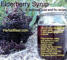 Elderberry Syrup A Delicious Cold and Flu Recipe Natural Health Remedies, Natural Cures, Natural Healing, Healing Herbs, Elderberry Benefits, Elderberry Recipes, Elderberry Juice, Flu Remedies, Herbal Remedies