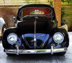 VW Oval Beetle 1954
