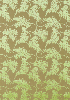 SPRING VELVET, Celery, W79237, Collection Avalon from Thibaut