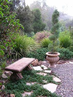 Nice landscaping idea with gravel path and cement bench