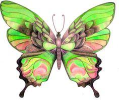 Бабочка Ette в - CSI для Poly