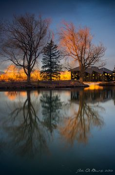 """""""Morning Light Of March"""" - The sunrises kisses the tops of the Willow trees at Belmar Park in Lakewood, Colorado on a beautiful morning in March. John De Bord Photography"""