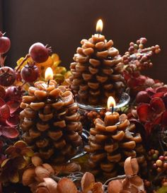 Pine Cone Candles   Cute Idea... Rustic