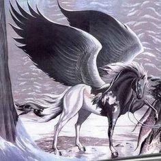 pegasus   Pegasus pics