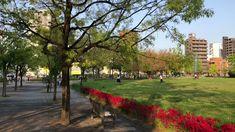 東千田公園 広島市中区東千田町1丁目 2021年4月17日 - YouTube Hiroshima, Sidewalk, Japan, Side Walkway, Walkway, Japanese, Walkways, Pavement