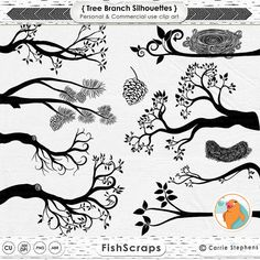 SALE 50% Tree Branch Silhouettes, Leaves + Branch ClipArt, Tree Branch Image + Bird Nest & Pine Cone, Download PNG Image + Photoshop Brush
