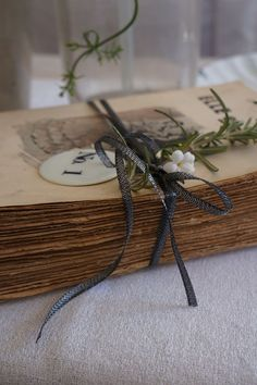 Old manuscript bound with foliage and ribbon
