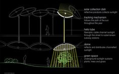 The remote skylight will use a reflective, parabolic solar collection dish outdoors to gather and concentrate sunlight. This dish will have a tracking mechanism so it can follow the sun across the sky. Fiber-optic cable will transmit captured solar radiation to the park; a series of domelike fixtures will use lenses and reflectors to distribute the light throughout the Lowline. The fiber-optic cables will allow Lowline organisers to set up as many remote skylight fixtures as they like.
