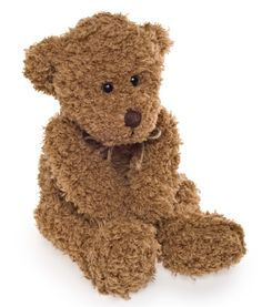 Who ever heard of an impolite Teddy Bear? Nobody! Introducing Unit 4 of ABC English & Me, Hello Teddy