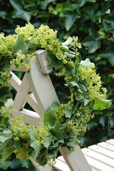 lady's mantle wreath