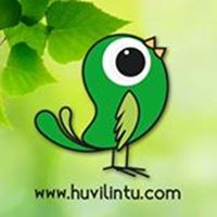 www.huvilintu.com