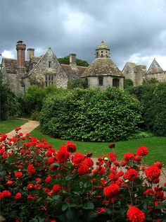 Nymans, Handcross, Haywards Heath, West Sussex. An English garden developed by three generations of the Messel family, from the late 19th century, and brought to renown by Col. Leonard C.R. Messel. Nymans, since 1953 has been a National Trust property. A disastrous fire in 1947 has reduced the house to a ruin.  http://www.callusfirst.uk.com/