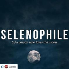 """""""#selenophile // follow @words"""""""