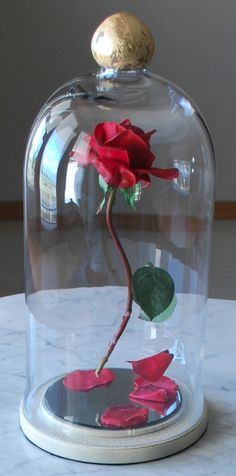 Learn How To Make A Floating Beauty And The Beast Rose