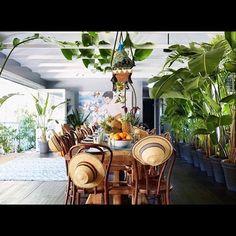 Informal celebrations cuban style. Celebraciones informales al estilo cubano #inspiration #inspiración #design #decor #tropical #trend2017 #green #verde #style #estilo #homedecor #homestyling #casa #celebration #celebraciones #eventplanner #lifestyling #xtravevents tropical #celebration #homedecor #style #casa #estilo #inspiration #eventplanner #design #inspiración #green #decor #homestyling #lifestyling #trend2017 #verde #celebraciones #xtravevents #eventprofs #meetingprofs #eventplanner…
