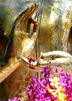 Image of Sunlit buddha hand from the lifestyle & culture photos of Dave Lloyd. Om Mani Padme Hum, Reiki, Zen Meditation, Qigong, Dalai Lama, Art Bouddhique, Namaste, Buddha Buddhism, Gautama Buddha
