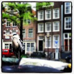 """""""Amsterdam Canals"""" by mortizia13"""