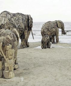 ELEPHANTS HEADING FOR WATER! Installation By: Andries Botha, A driftwood sculpture at beach - Belgium 2006.