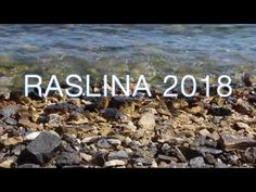 Raslina 2018 Art, Craft Art, Kunst, Gcse Art, Art Education Resources