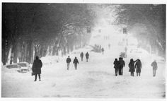 When people awoke on Jan. 31, 1982, to see the big snowstorm, the only way around for most of them was by foot, preferably in high and heavy boots. The forecast had been for only four inches, but the storm stalled over St. Louis and dumped 14 and more inches overnight Jan. 30-31. The official record was 13.9 inches at Lambert St. Louis International Airport, but the National Weather Service said most of St. Louis and southwest St. Louis County had 18 inches or more.