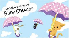 Fundraising: A pet baby shower fundraiser can be a fun, entertaining and profitable fundraiser. Kittens And Puppies, Cats And Kittens, Animal Welfare League, Cat Hacks, Foster Kittens, Holding Baby, Foster Care, Diy Stuffed Animals, Humane Society