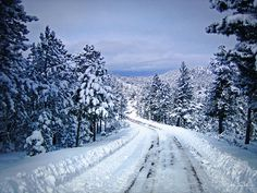 country landscapes   ... Woodland Photo -country Roads Take Me Home -mountain Landscape -nature