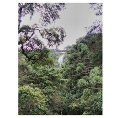 Vista de cachoeira Campos de Jordão SP  Instagram: camilapedral Foto de: Camila Pedral