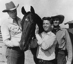 Furie est une série télévisée western américaine en 166 épisodes d'environ 30 minutes diffusée entre le 15 octobre 1955 et le 19 mars 1960 sur le réseau NBC.