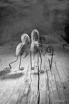 Photography by Nailia Schwarz