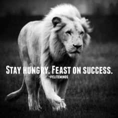 Always hungry! Always hungry! Always hungry! Always hungry! Always hungry! Always hungry! Always hungry! Lion Quotes, Me Quotes, Motivational Quotes, Inspirational Quotes, Qoutes, Sport Quotes, Lion Memes, Tiger Quotes, Quotations