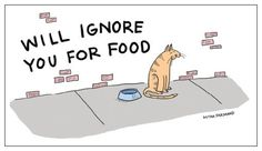 Will ignore you for funny. Funny cat drawing and quote.