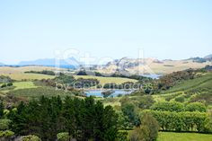 Whangarei District View, Northland, New Zealand royalty-free stock photo Green Fields, Lush Green, New Zealand, Royalty Free Stock Photos, River, Outdoor, Image, Outdoors, Outdoor Games