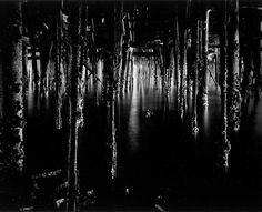 Wynn Bullock, photography