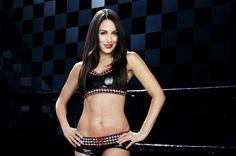 WWE Brie Bella Pic #1