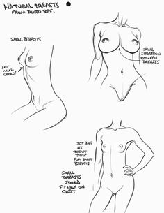 Female Breast ✤ || CHARACTER DESIGN REFERENCES | キャラクターデザイン | çizgi film •