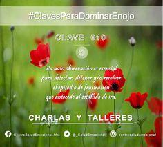 #Enojo #Ira #DominarEnojo #Dominio #Autodominio #SaludEmocional  #CentroSaludEmocional #Clave #010
