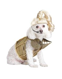 Get your dog in 'Vogue' with this Pup-A-Razzi Pop Queen Dog Costume! In the cone bra bustier and blonde ponytail wig with mike, your dog is ready to take the stage. Girl Dog Costumes, Funny Couple Halloween Costumes, Pet Costumes, Costume Ideas, Halloween Ideas, Funny Dogs, Cute Dogs, It's Funny, Hilarious