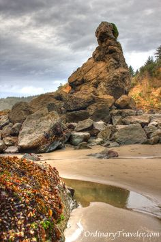 Trinidad State Beach in Humboldt County. Another gorgeous spot in California.
